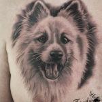 Bailey_Icelandic_Shepard_Tattoo_Zindy_ink