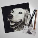 Golden Retriever Drawing by Zindy Ink